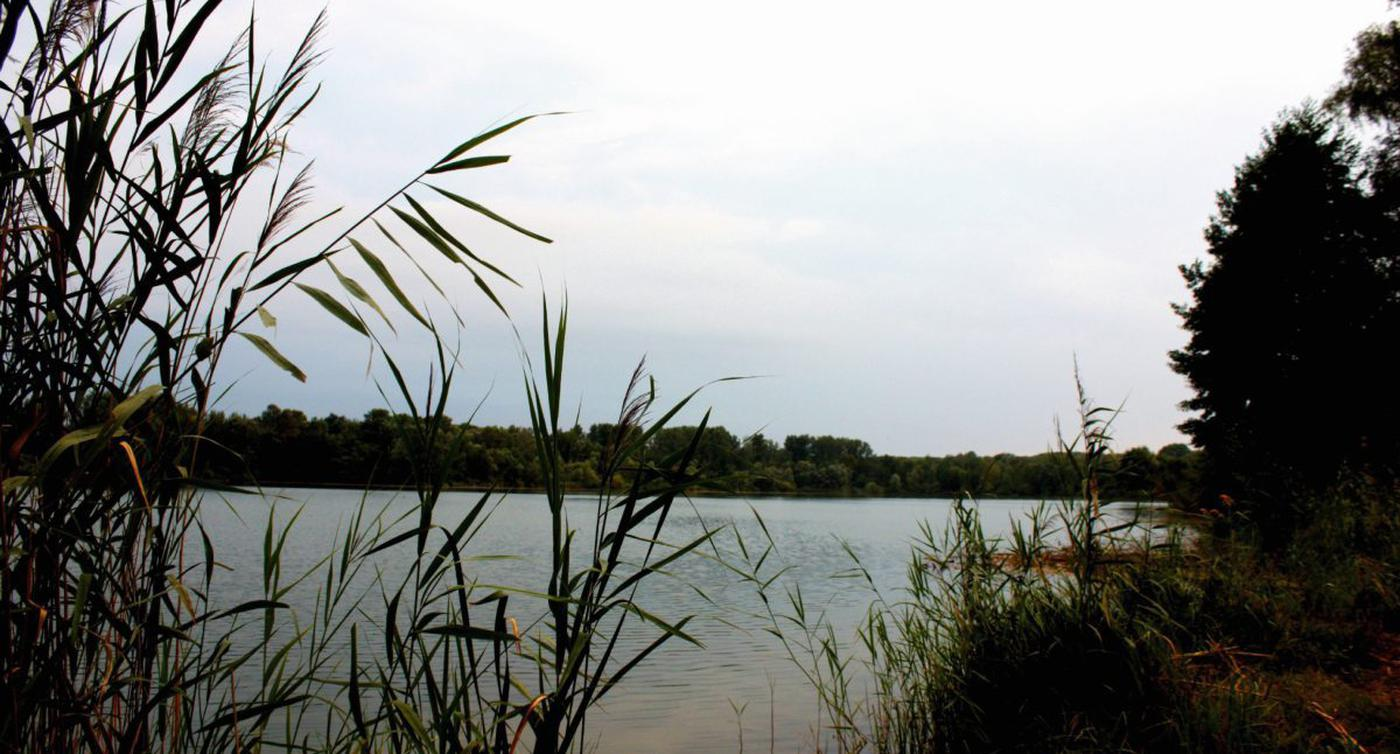 Baggersee Bruchsal