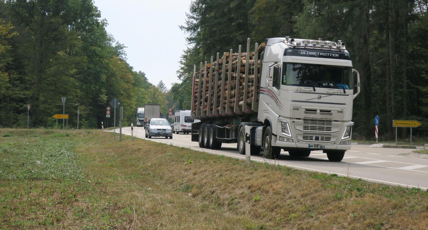 Für Pendler nach Baden wichtig: Wieso ist die B9 im Bienwald nicht vierspurig?